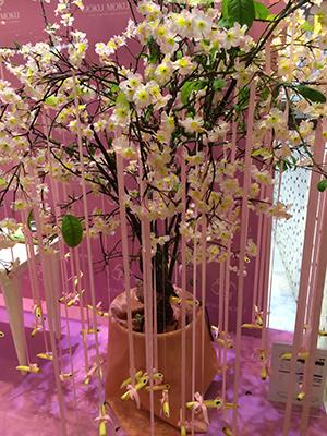 Dubai_a9_400.jpg