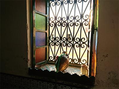 Kairouan09.jpg
