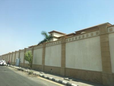 Saudi1709_2-13.jpg