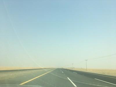 Saudi1709_2-4.jpg