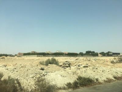Saudi1709_3-3.jpg