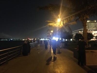 Saudi1709_3-4.jpg