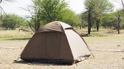 Serengeti_P7051013_400.jpg