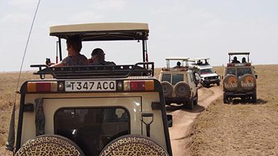 Serengeti_P7051215_400.jpg