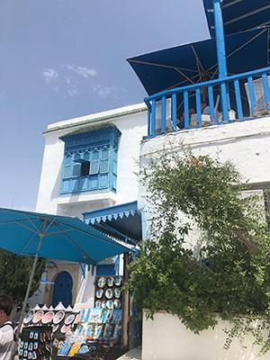 Tunisia_Sidi_6791178_400.jpg