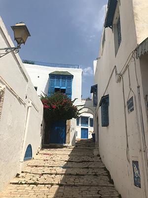 Tunisia_Sidi_6791181.jpg