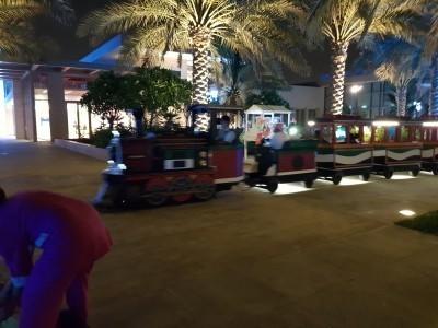 Umm Al Emarat Park_05.jpg