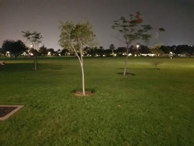 Umm Al Emarat Park_12.jpg