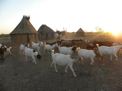 namibia_009.jpg